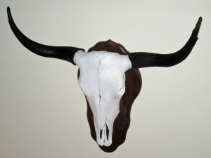 Mesa_View_Yak_Ranch_skull