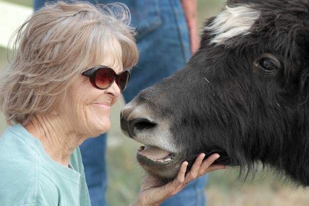 Durango Herald Article | Mesa View Yak Ranch